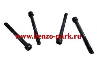 Набор болтов (винтов) (комплект — 4 шт.) для бензопил и бензокос L 54,5 мм, М 5 мм, под шестигранник